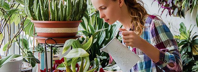 Utilize da criatividade e monte um jardim